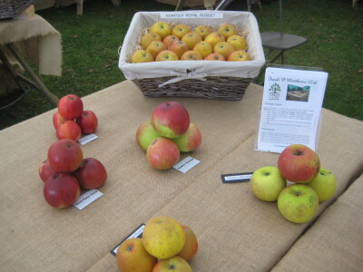 Tenbury Applefest