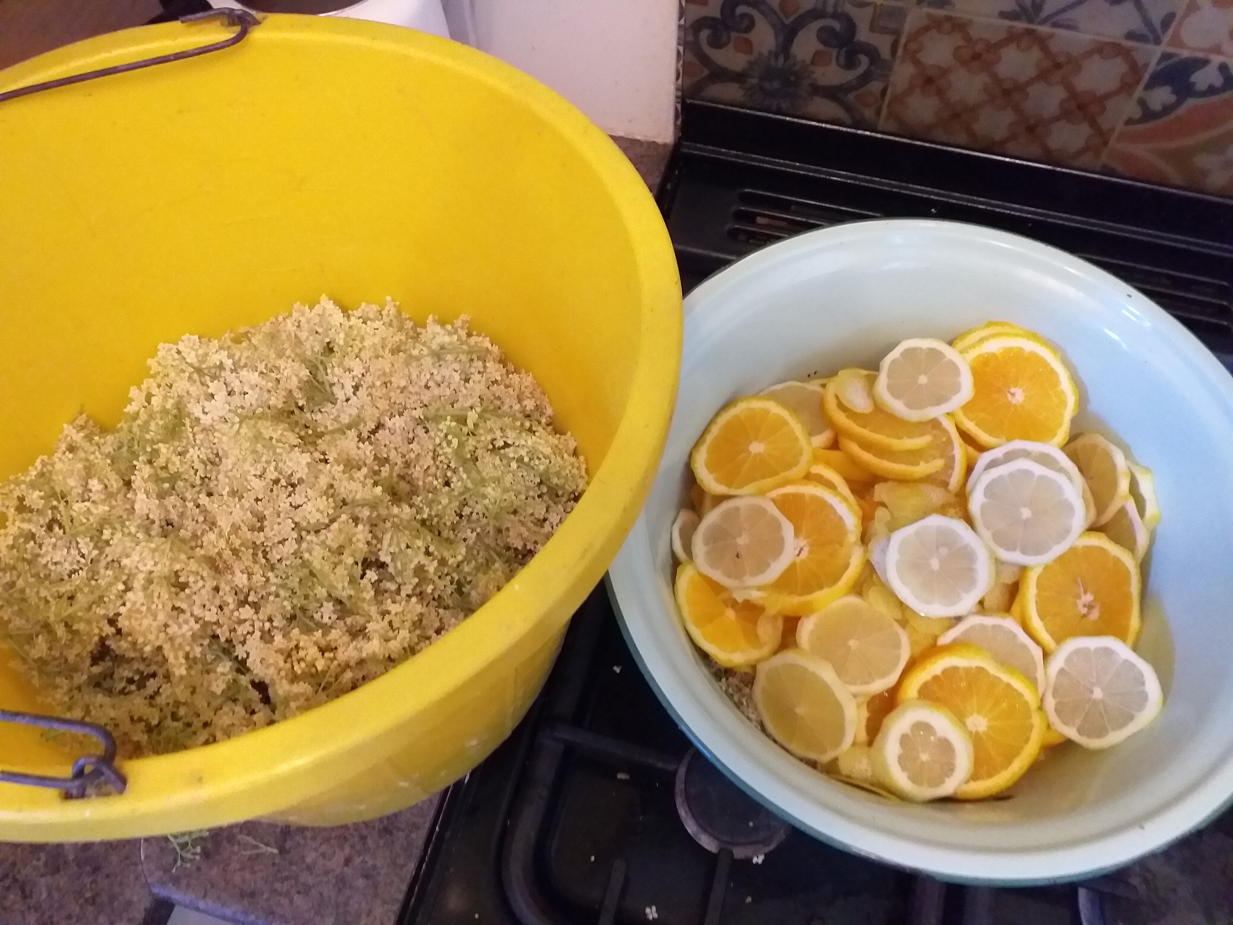 Elderflower-cordial-2.jpg